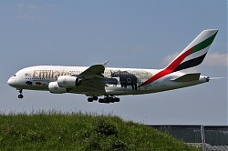 4978_A380_A6-EER_Emirates_Wildlife.jpg